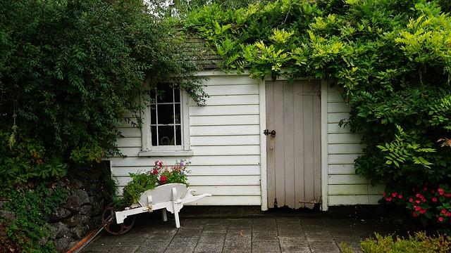 dřevěný domek, zarostlý trávou, kolečko