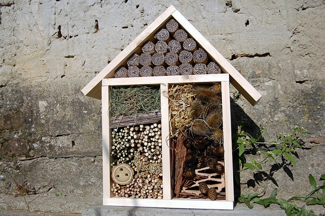 Hmyzí domečky