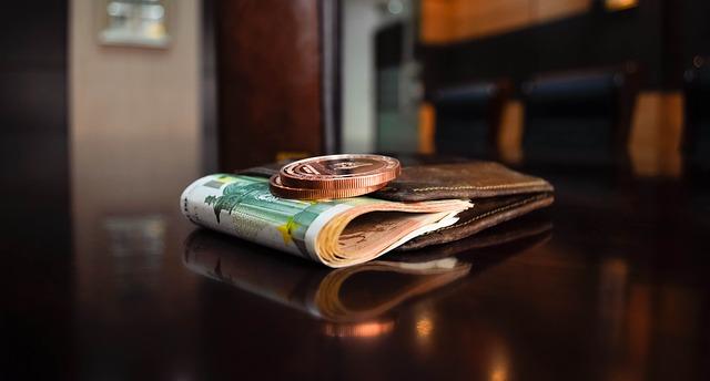 peněženka, bankovky, mince